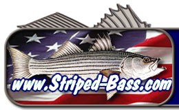 Striped-bass.com - All Striper Fishing, All The Time!